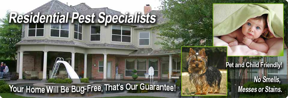Dallas Fort Worth Residential Pest Control Service